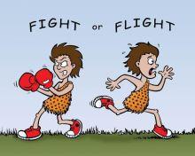 FightOrFlight-1